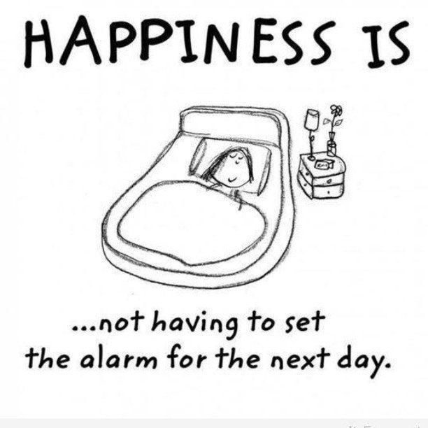 Happiness Quotes Quote Happy Happiness Sleep Happiness Quote Fun Quotes Funny Happy Quotes Funny Quotes