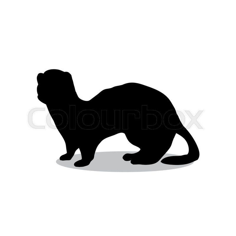 Stock Vector Of Ferret Weasel Ermine Mammal Black Silhouette Animal Vector Illustrator Otter Art Mammals Ermine