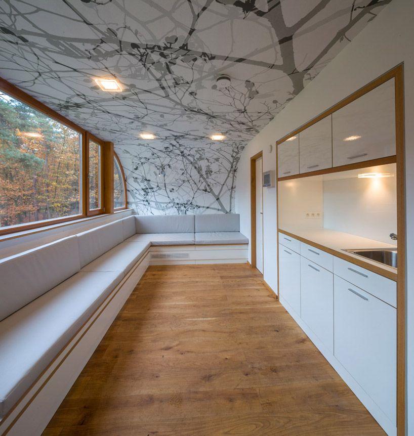 baumraum: treehouse in belgium