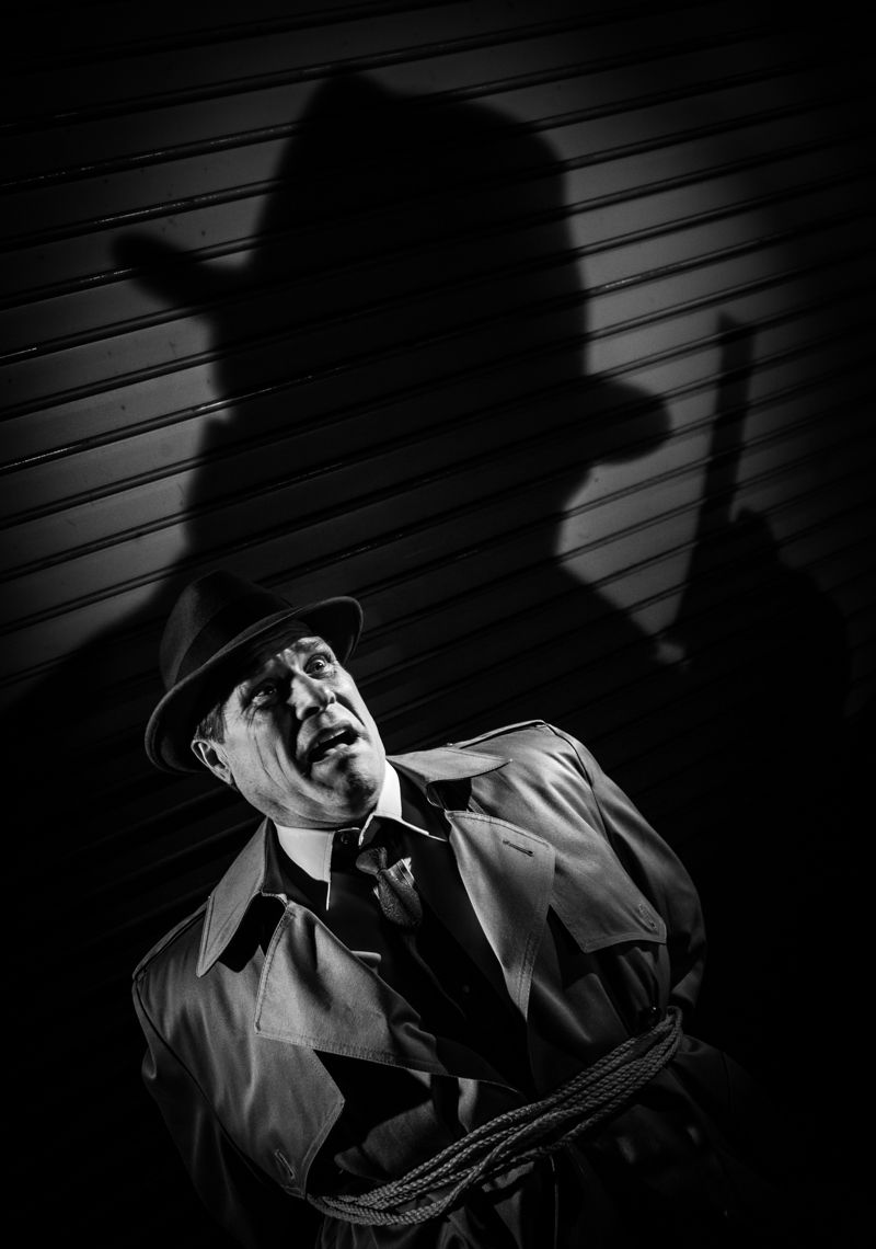 Hard shadows almost define the film noir look be it the alternating patterns of dark and light slashes from venetian blinds to a silhouette of a man . & Hard shadows almost define the film noir look: be it the ... azcodes.com