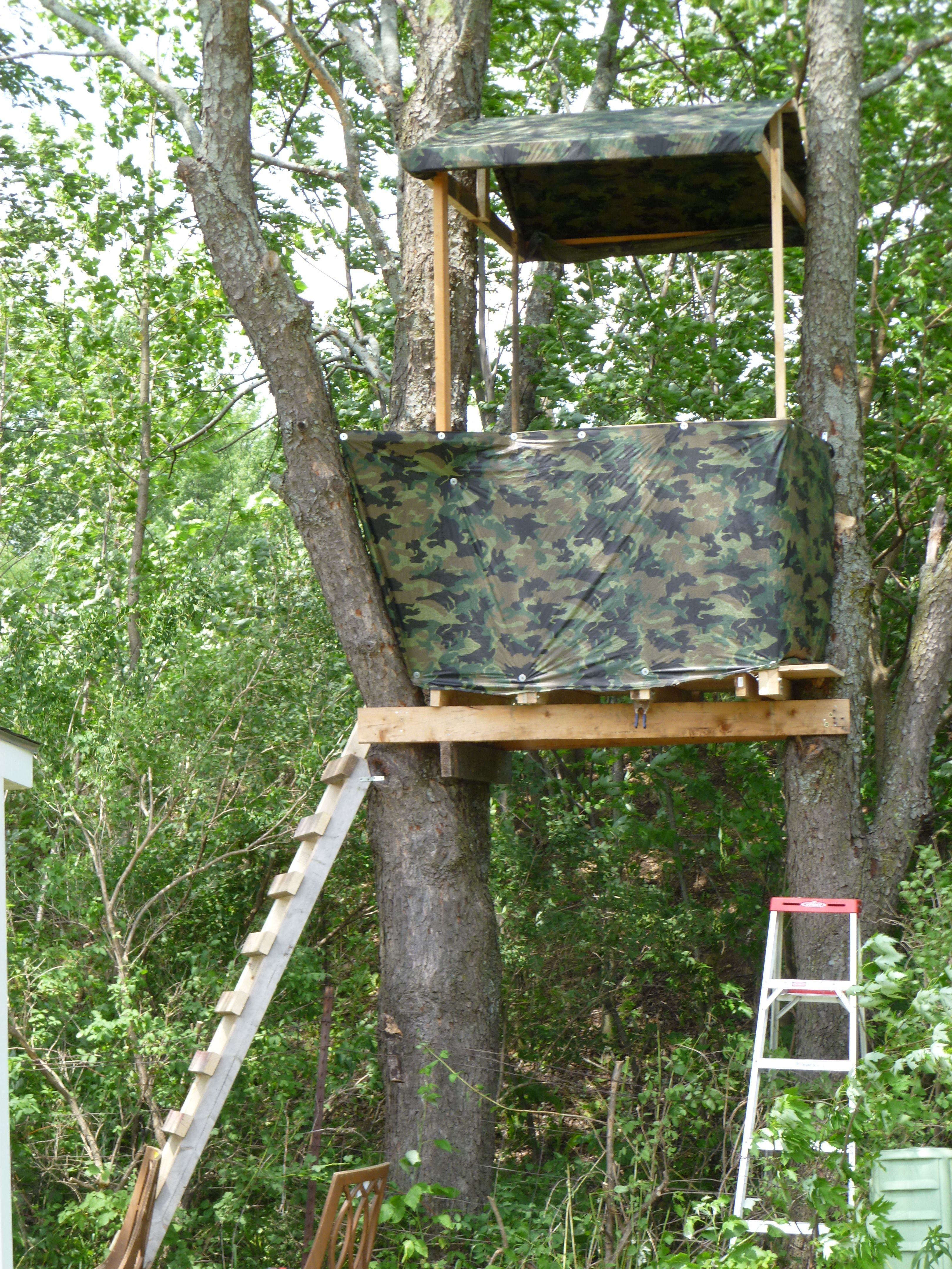 Awesome DIY Treehouse! Building a memory with your kids ...