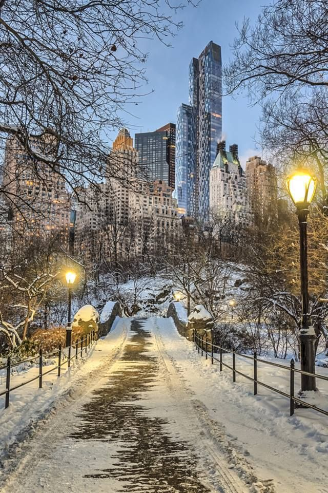 Central Park In December 2017 Winter Scenery New York Christmas Central Park Nyc