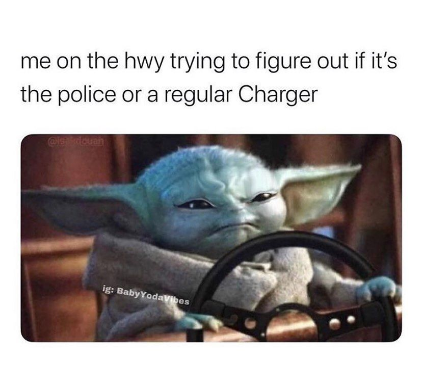 675 Likes 14 Comments The Savage Deplorables The Savage Deplorables On Instagram Follow Partners Swedishbeauty Yoda Funny Yoda Meme Funny Memes