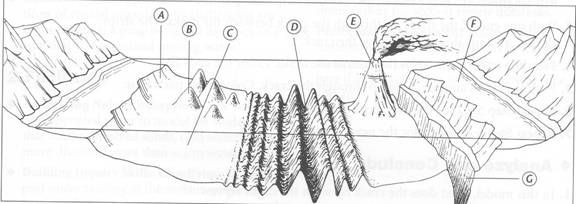 Grab this wonderful diagram of the ocean floor for a good labeling ...