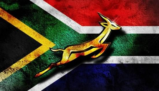 Fo The L Of S On Twitter Springboks Rugby South Africa South African Flag South Africa Rugby