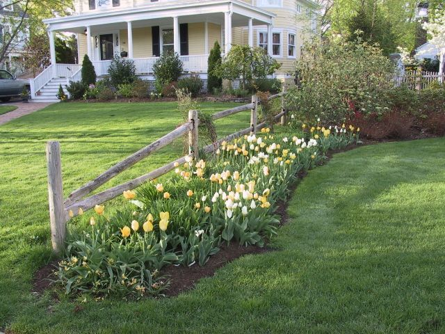 Live The Look Fence Landscaping Backyard Fences Front