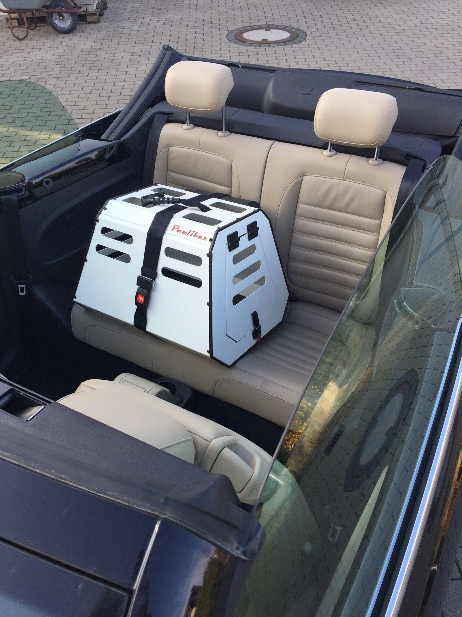 Www Paulibox De Sicher Mobil Mit Hund Im Cabrio Rucksack Fur Hunde Hundetransport Rucksitz