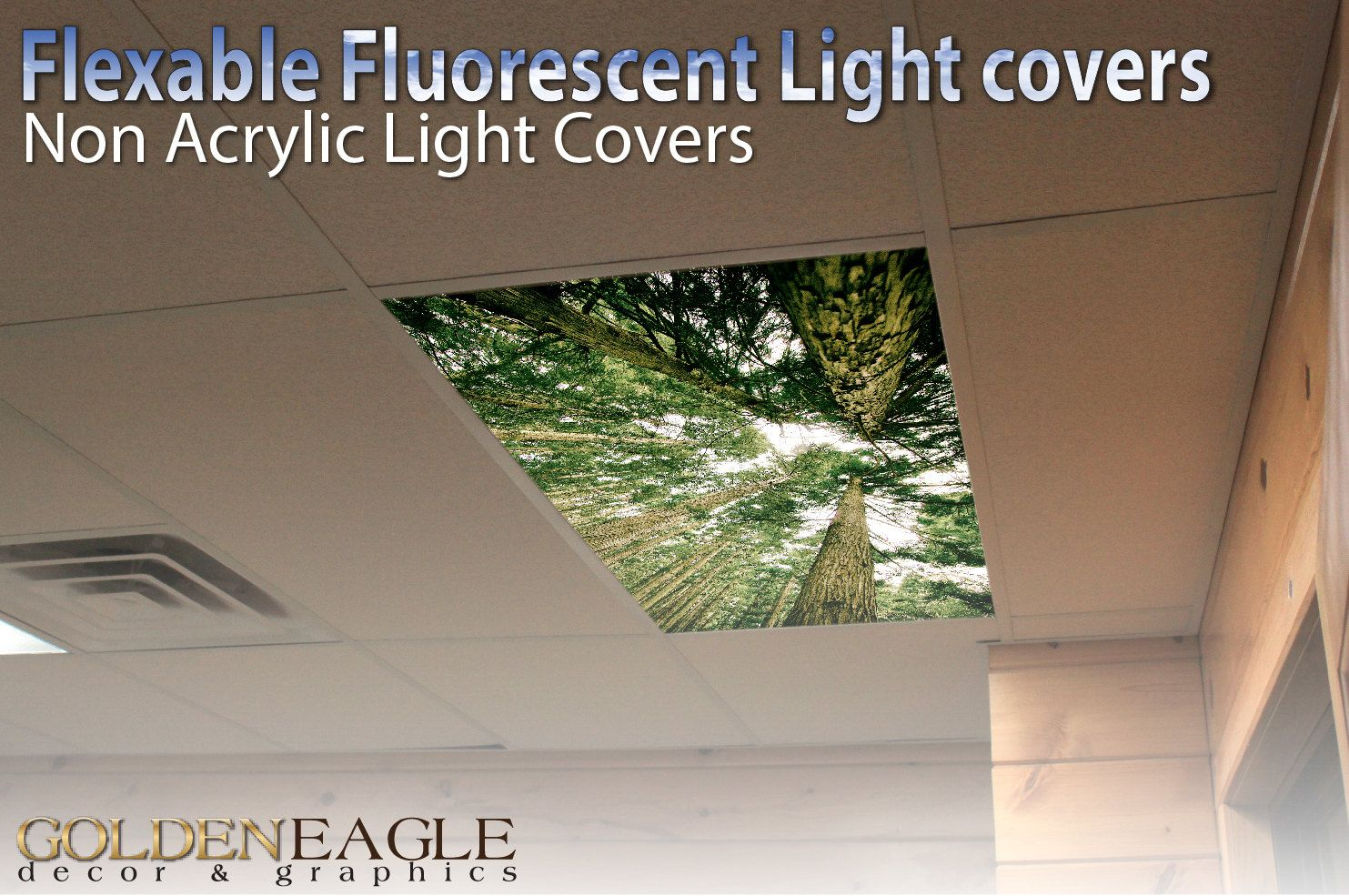 Flexible fluorescent light cover films skylight ceiling office flexible fluorescent light cover films skylight ceiling office medical dental beach palm canopy medical examination light covers and golden eagle dailygadgetfo Images