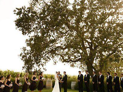 Gainey Vineyard And Ranch Santa Ynez California Wedding Venues 2