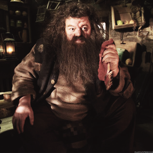 Hagrid S Tale Voldemort Harry Rowling Harry Potter Voldemort