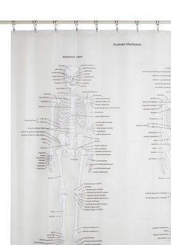 This Is Going To Be My New Shower Curtain Soon 3 Anatomy Was One Of Favorite Classes