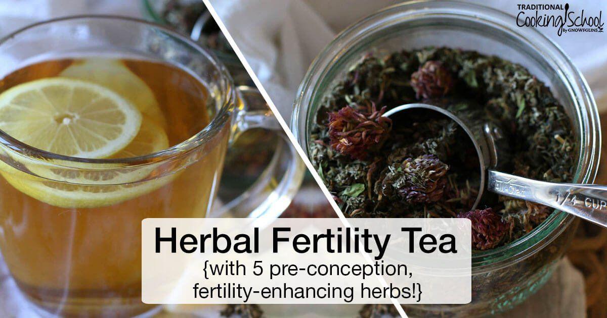 Pin On Herbal Teas Recipes