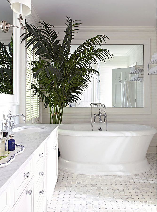 A potted palm brings a dose of life and color to an all white bathroom