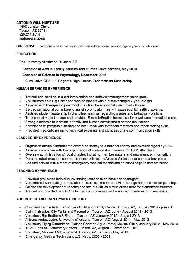 Functional Resumes Examples Resume Cv