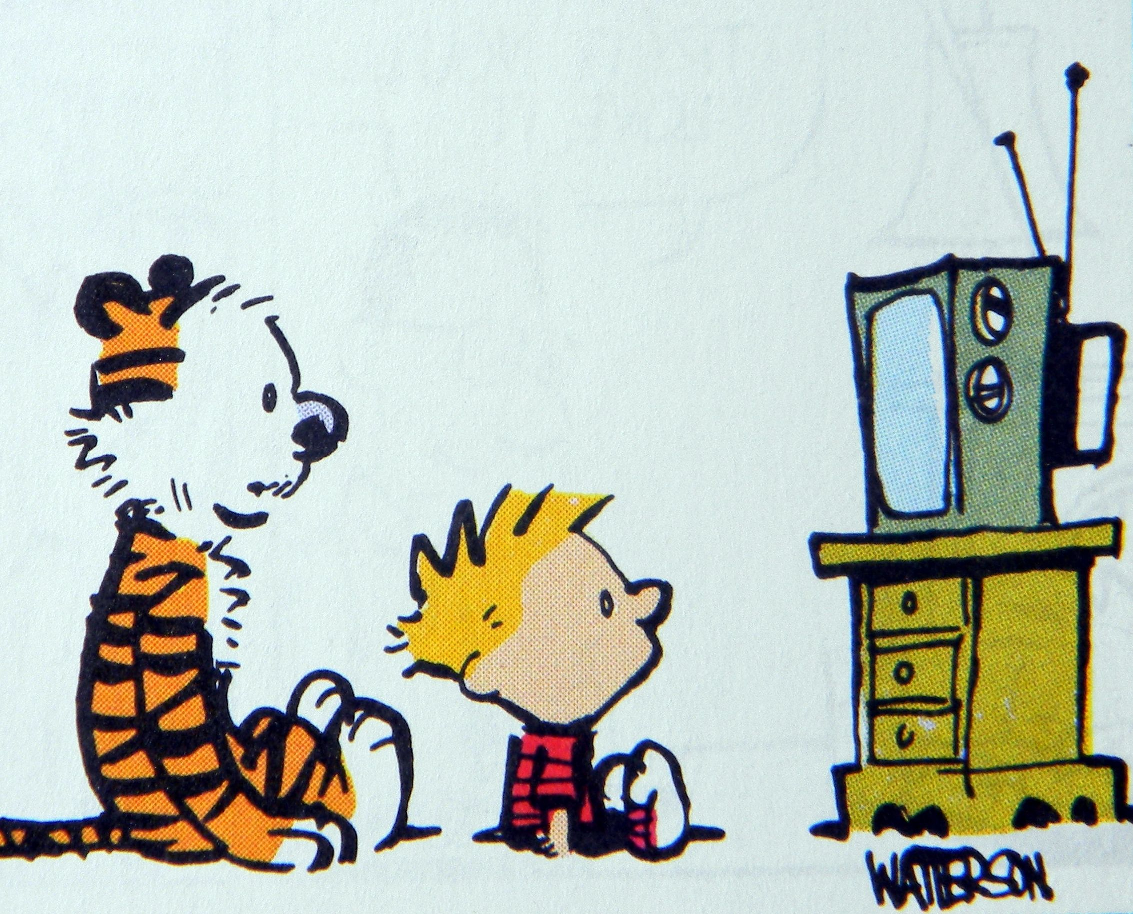 Calvin and Hobbes, TV
