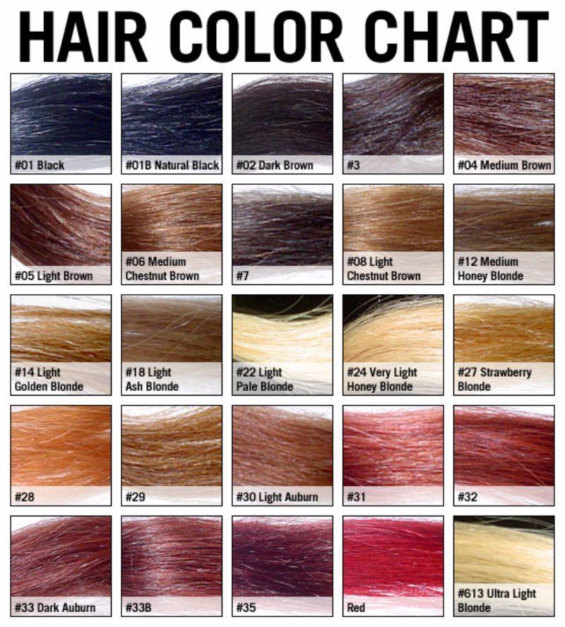 26 Redken Shades Eq Color Charts ᐅ Brown Hair Color Chart Hair