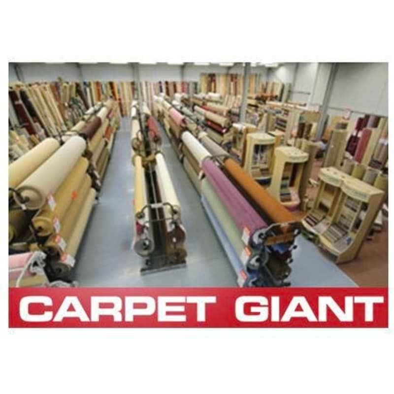 Carpet Giant Yate Bristol Feels Free To Follow Us In 2020 With Images Carpet Best Carpet Carpet Styles