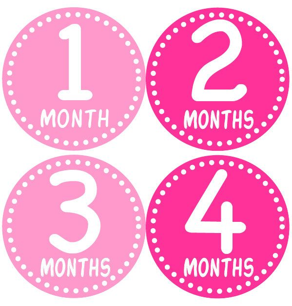 BABY MONTH STICKERS   Girl Monthly Onesie by BabyStickerCo on Etsy, $9.00