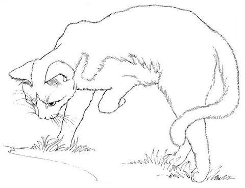 Pin Af Wanda Twellman Pa Just Cats Coloring 1 Maleboger Katte Billedkunst