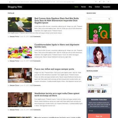 Blogger Website Template | Blogging Website Template