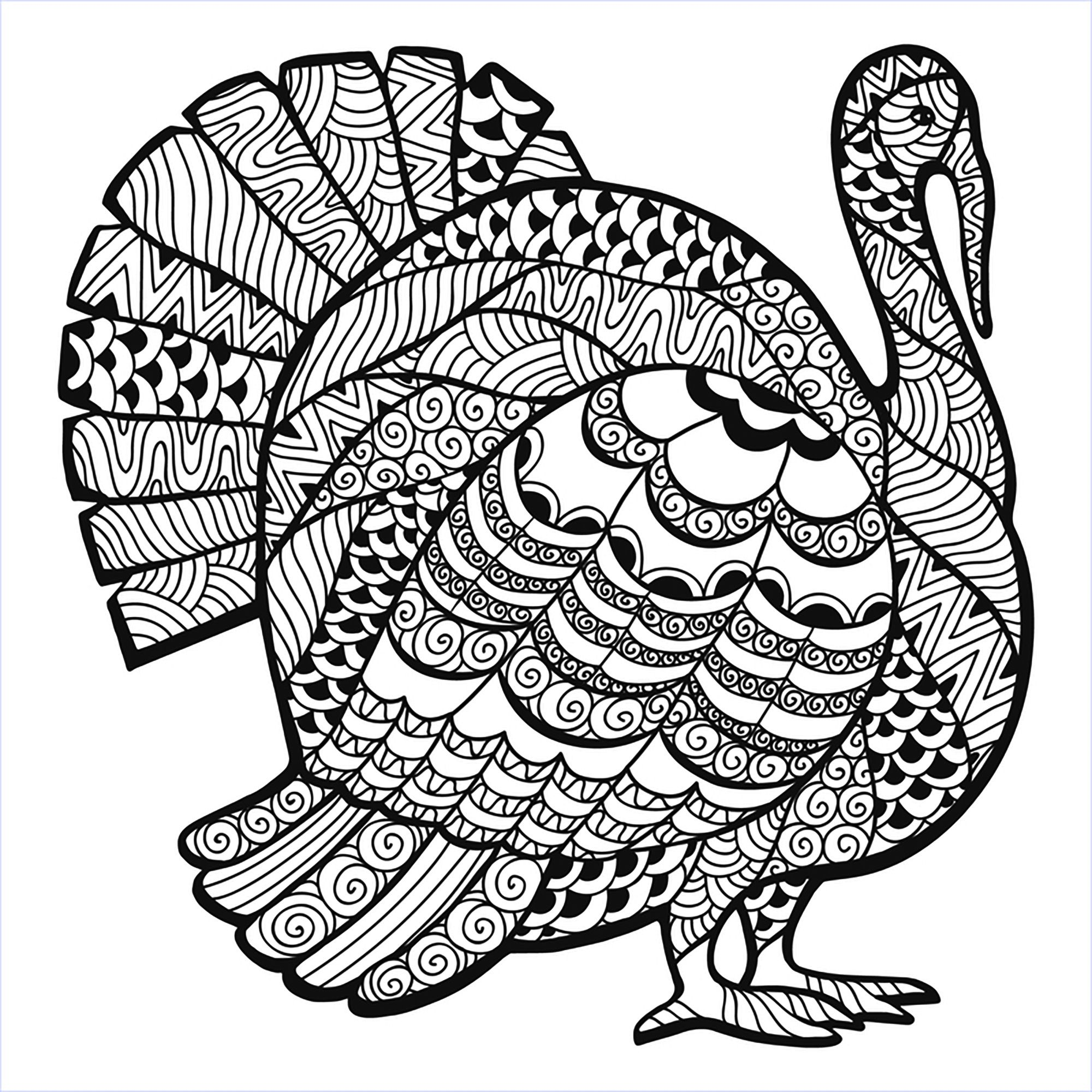 Thanksgiving Turkey Zentangle Coloring page, From the
