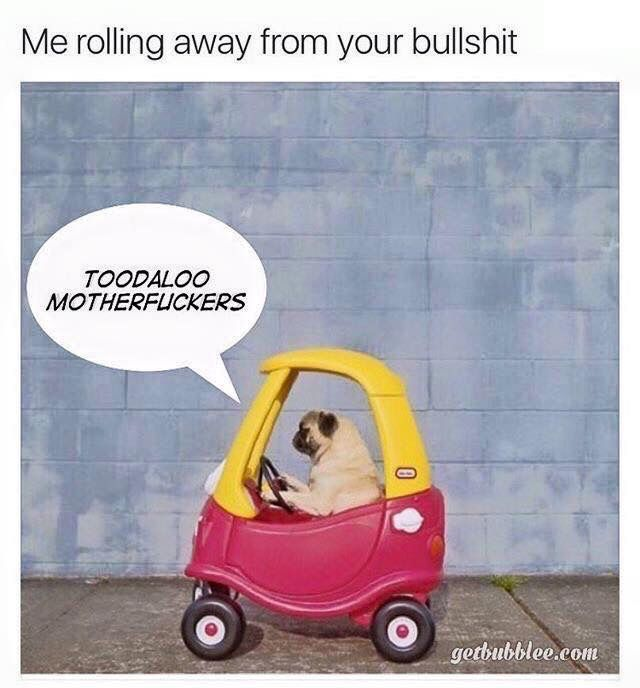 c63d87c9adfbe4a8a2fb361c5487c8be toodaloo bs lol driving away from the bullcrap pugs driving
