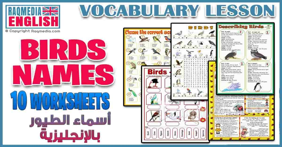 Birds Names Vocabulary Worksheets And Crosswords Vocabulary Lessons Vocabulary Reading Comprehension Texts