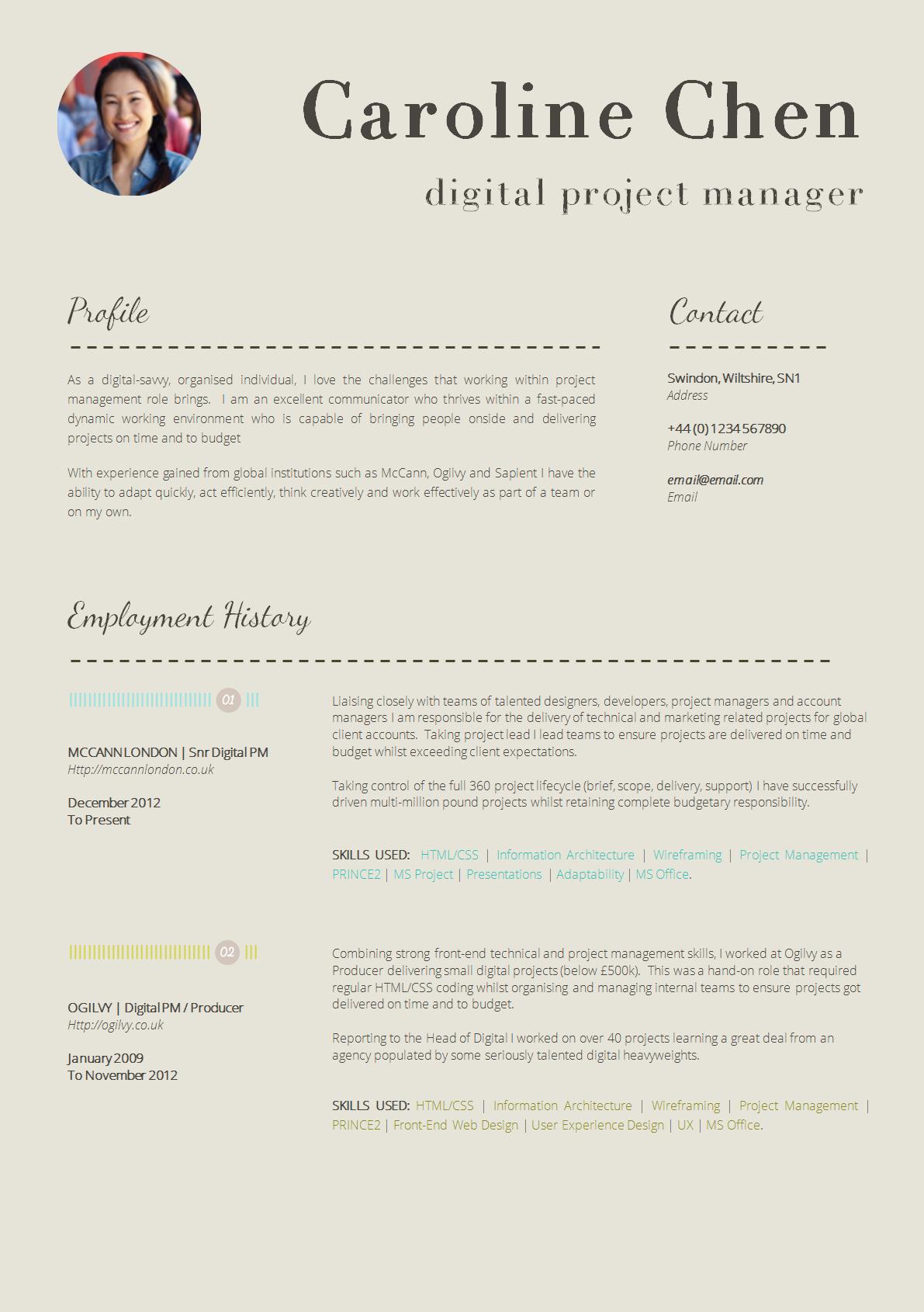 Cv Template Resume Template Professional Online Resume Template Cv Template
