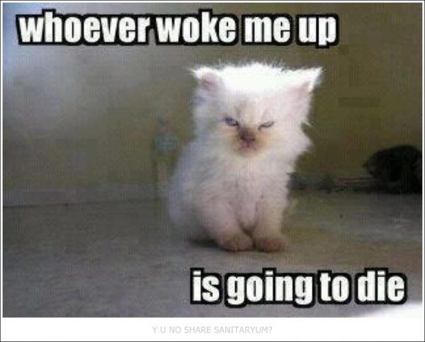 Making Us Laugh This Week | 12 Memes For Anyone Who Hates Mornings