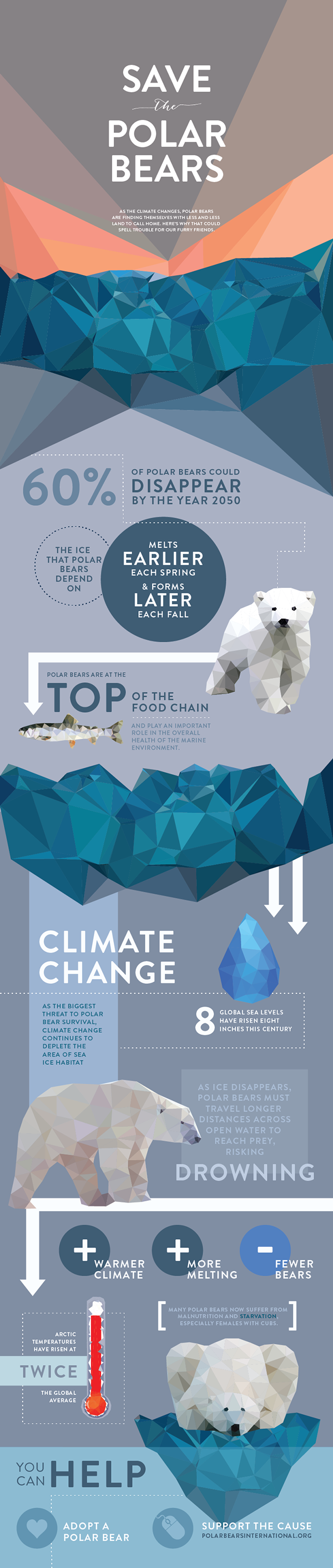 """""""Save The Animals"""" Infographic Series by Brianne Boland"""