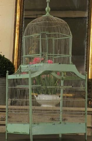Large green french birdcage canary garden