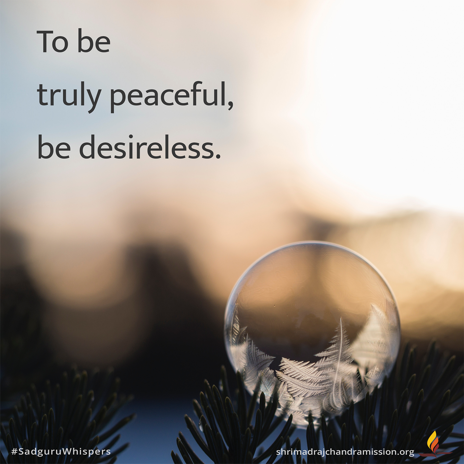 To Be Truly Peaceful Be Desireless Sadguruwhispers Quotes Qotd Peaceful Peace Desireless Innerh Savvy Quotes Run Away Quotes Daily Motivational Quotes