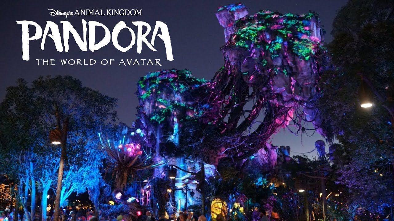 Pandora The World Of Avatar Area Background Music Loop Animal Kingdom Animal Kingdom Disney Animal Kingdom Avatar