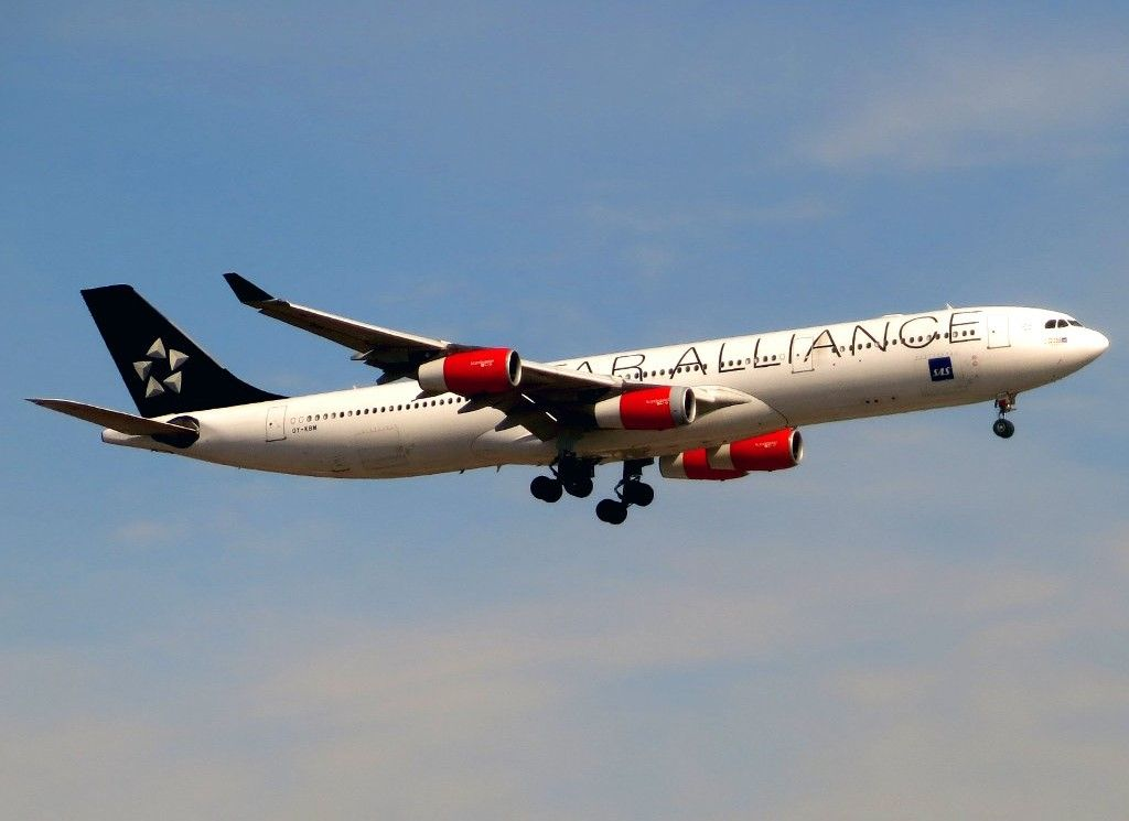 Sas Scandinavian Airlines Star Alliance Livery Airbus A340 313e Oy Kbm Astrid Viking At Newar Airbus Fleet Scandinavian Airlines System