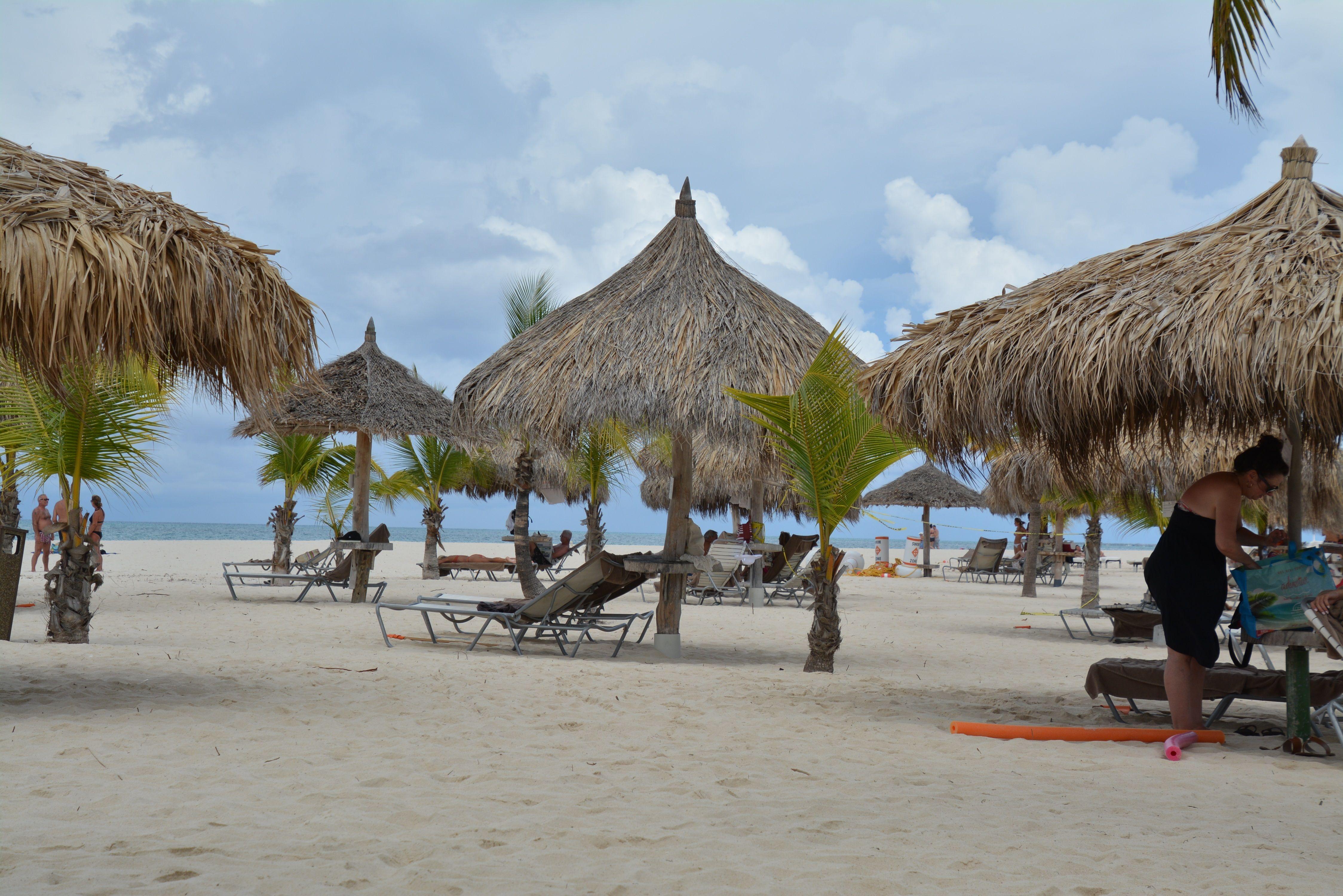 Karibia: Tropisk nytelse i Aruba - Reiseliv
