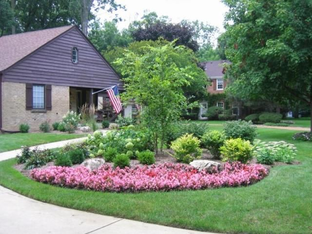 Specimin trees for landscaping ideas front house for Flower designs for yards