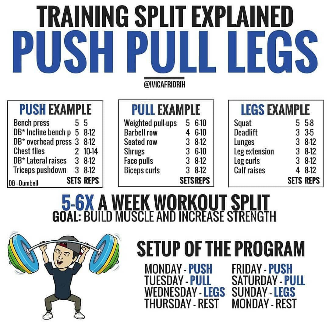 Push Pull Leg Workout Split Push Workout Workout Splits Push Pull Workout Routine