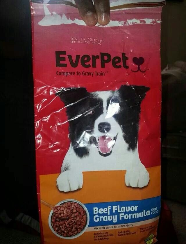 Do Not Buy This Food A Girl Recently Ran Out Of Dogfood And Got