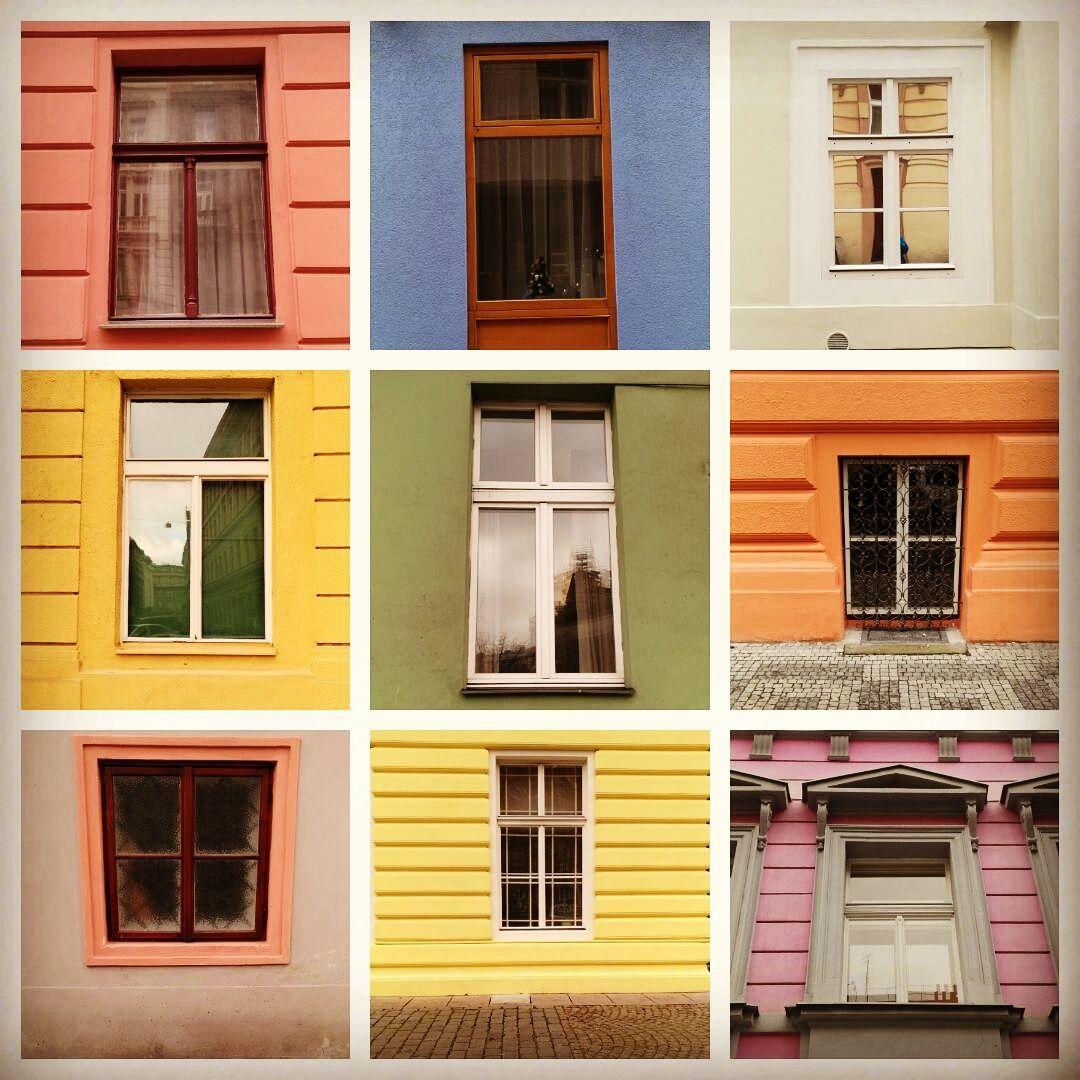 Colores y más colores