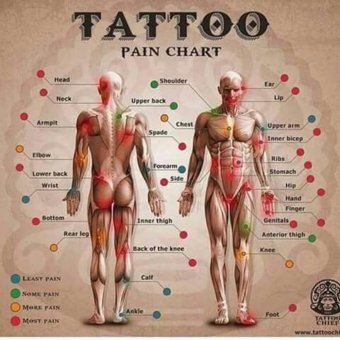 Tattoo Pain Chart Tattoos Pinterest Tattoos Tattoo Pain And