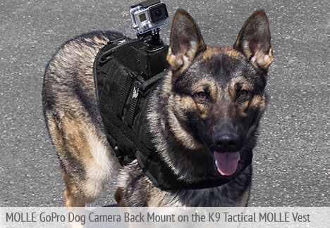 K9 Molle Best Gopro Dog Camera Back Mount Gopro Molle Vest Dogs