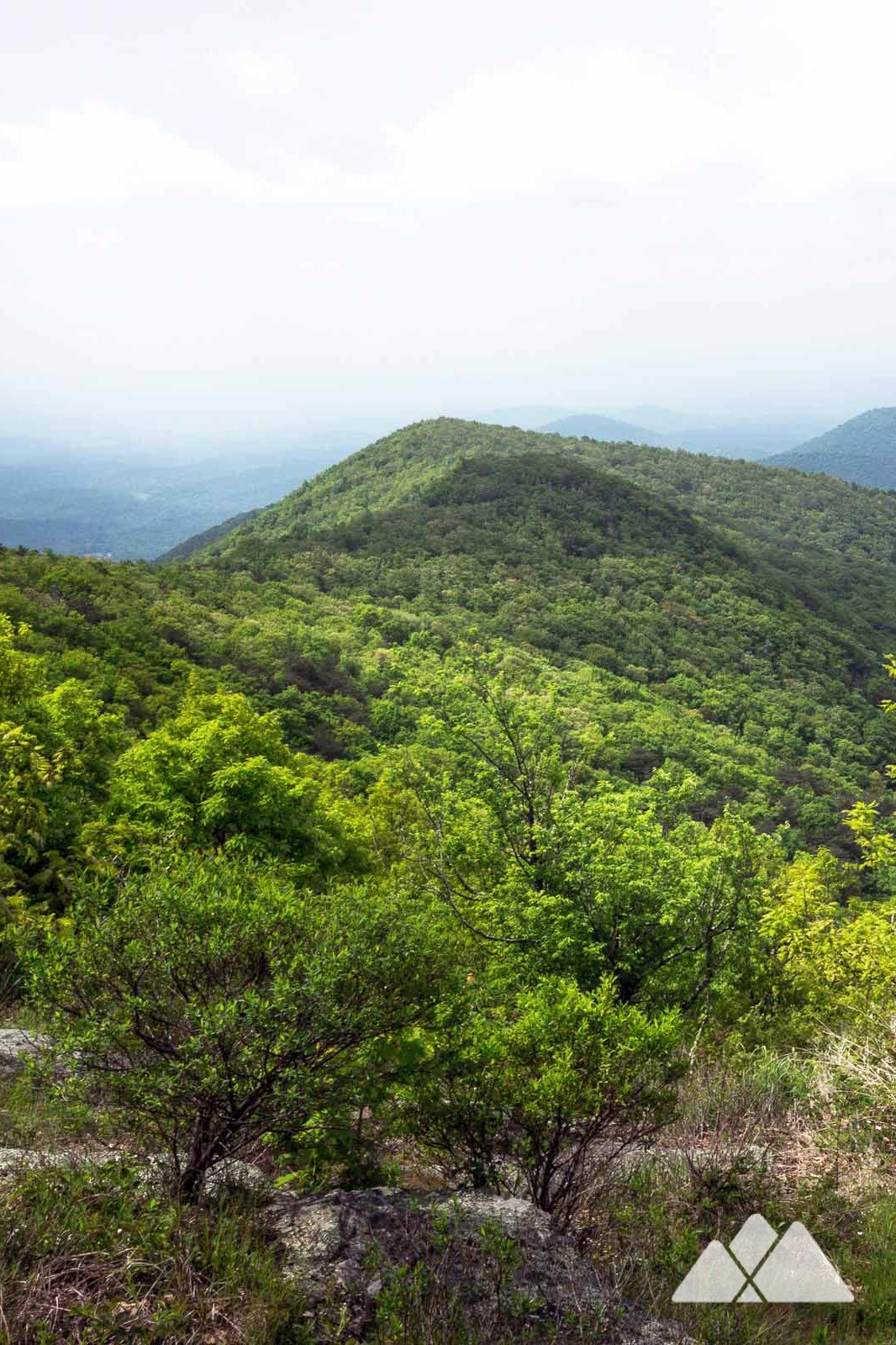 23fc22e95a7 Cowrock Mountain  hike the Appalachian Trail to stunning views from Blood  Mountain