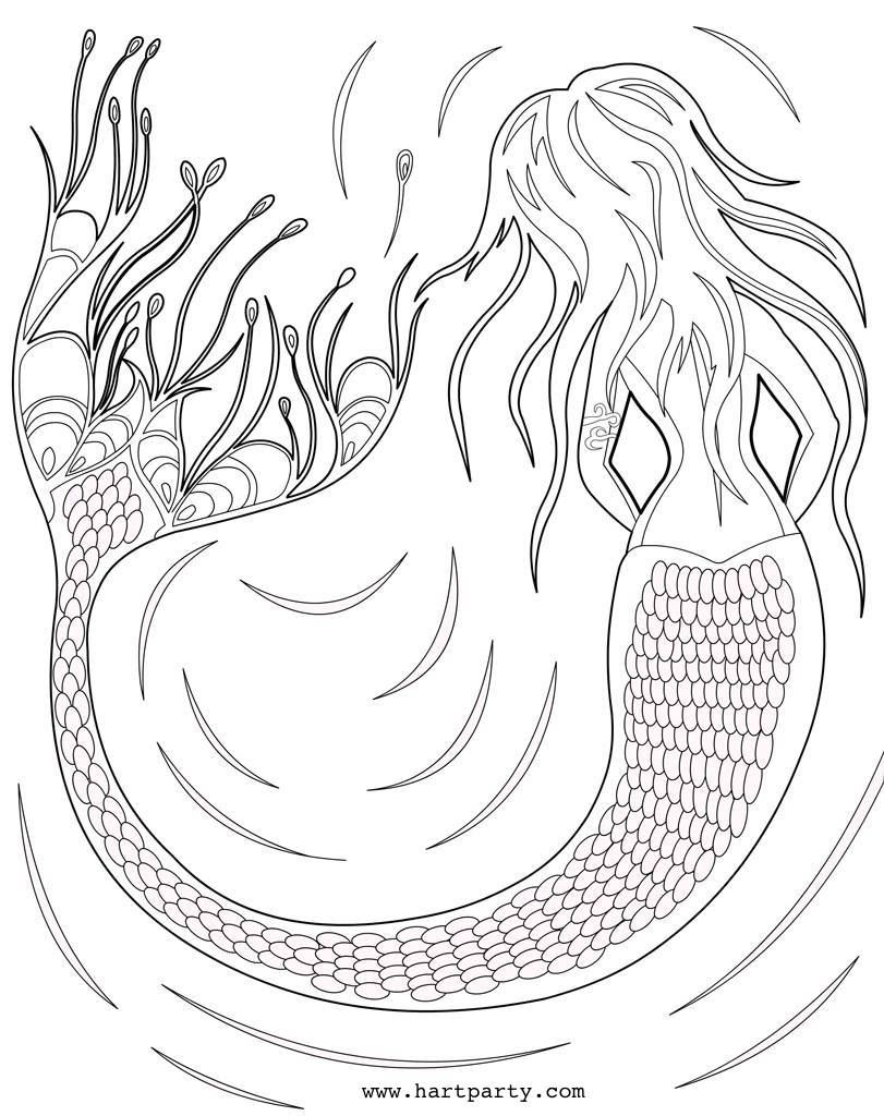 traceable and coloring page mermaid by the art sherpa by cinnamon