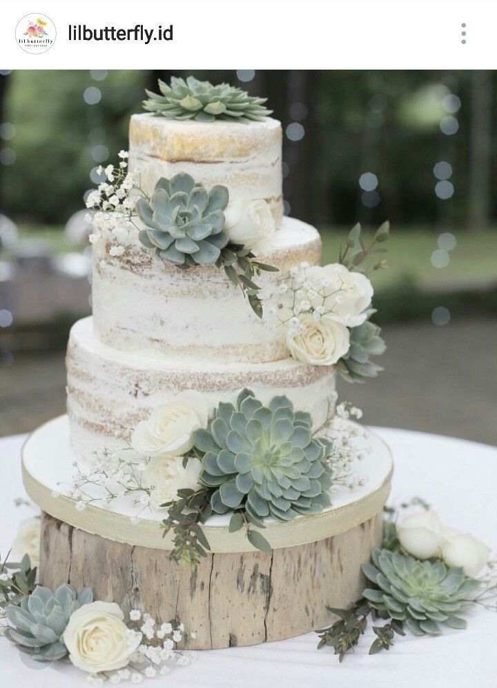 Stunning Succulents wedding cake  countryweddingcakes   Semi  Naked     Stunning Succulents wedding cake  countryweddingcakes