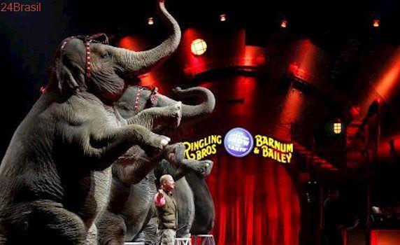Altos custos, pouco público: Circo mais antigo do mundo fechará as portas após 146 anos