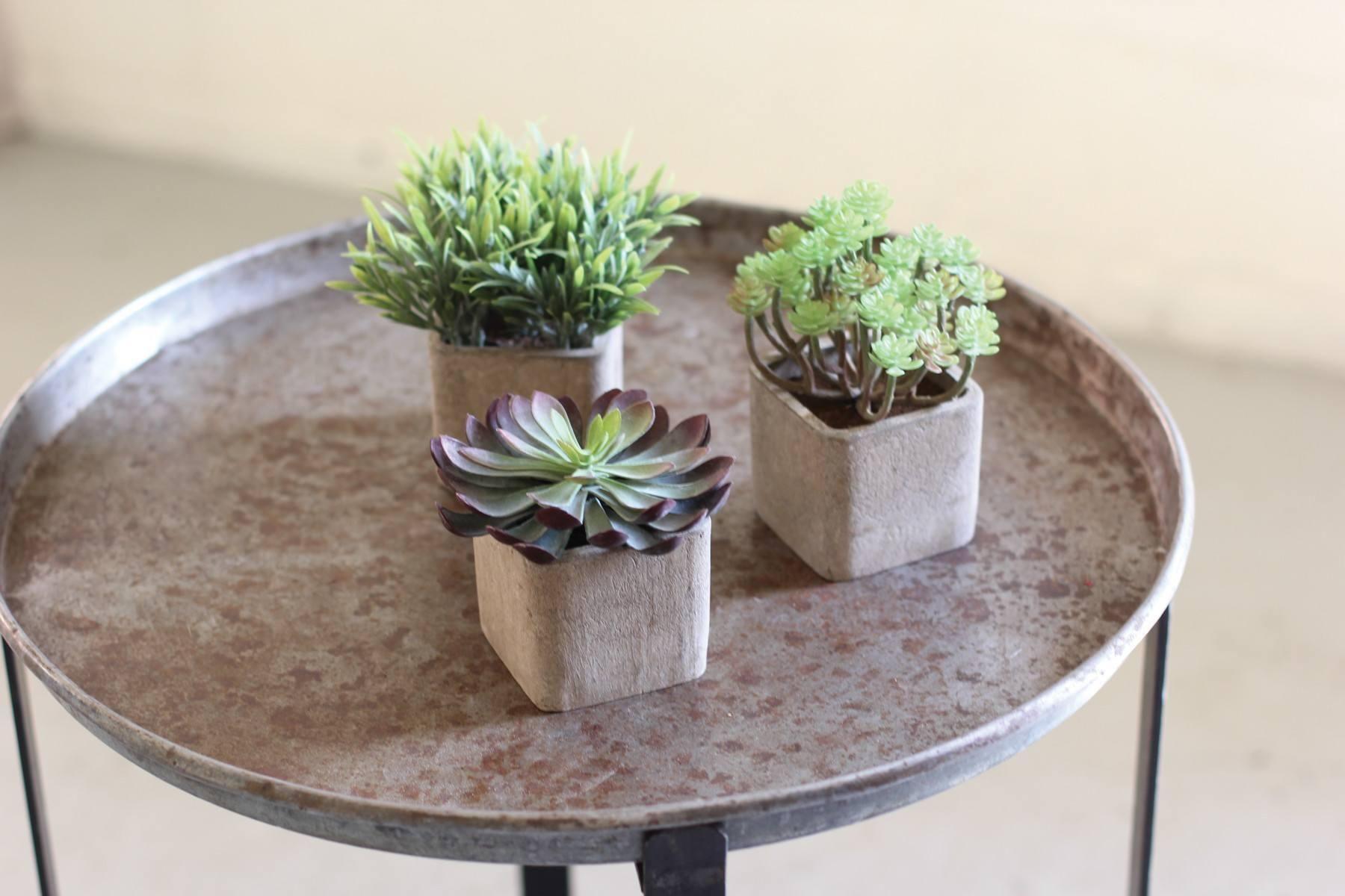 S 3 Small Artificial Succulents In Square Pots #4 5 12