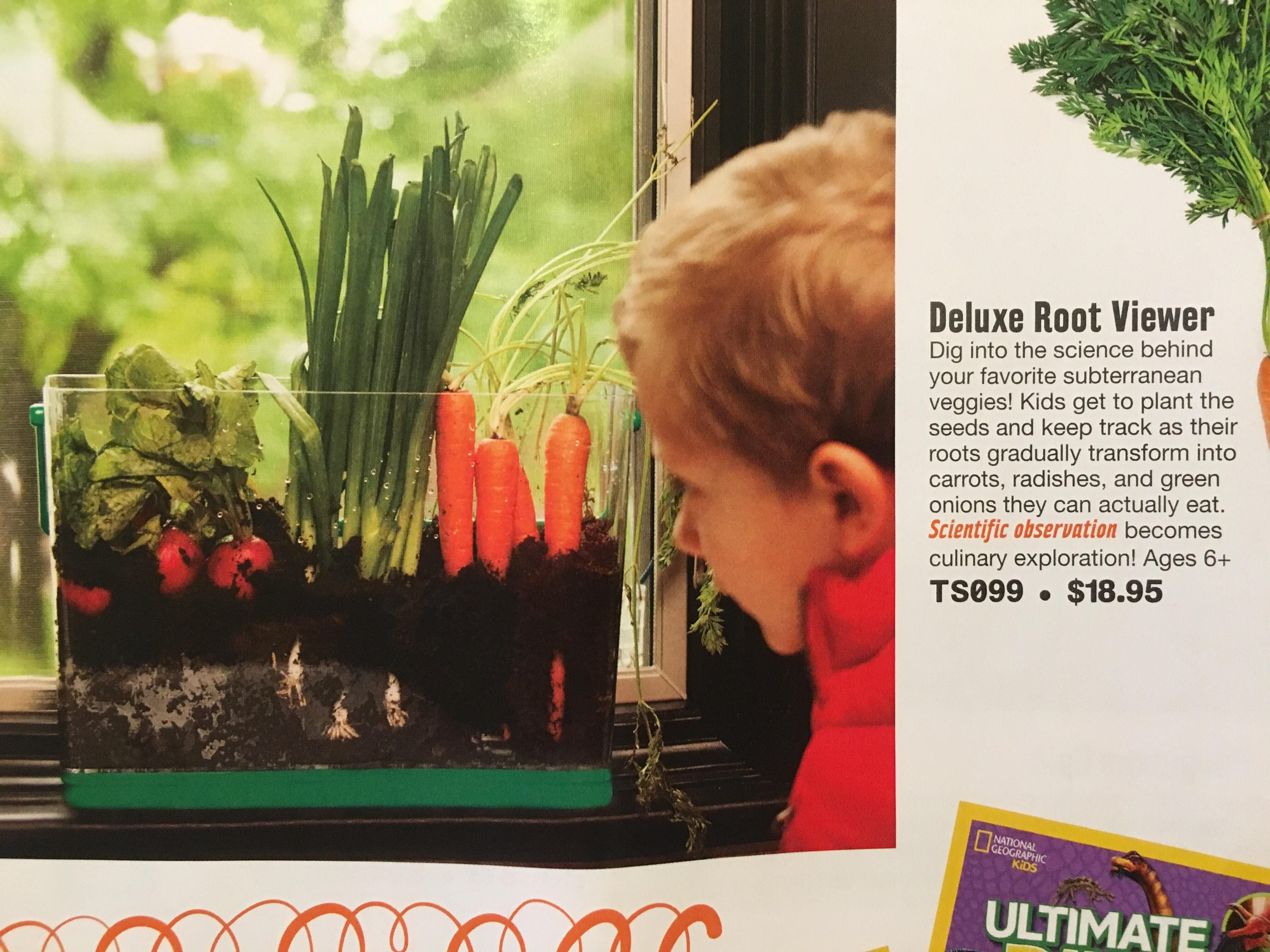 This ad in an educational toy catalog I didn t realize carrots