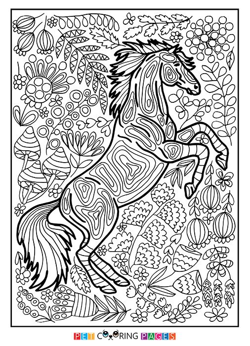 Free Printable Horse Coloring Page Available For Download Simple And Detailed Versions Adults Kids