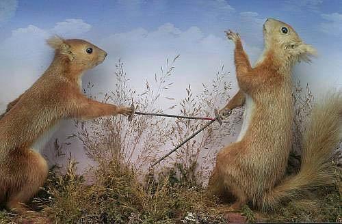 Walter Potter, squirrels