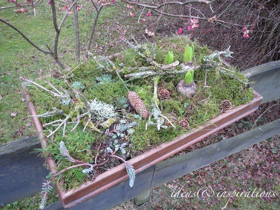 Ideas and Inspirations: Weihnachtlicher Garten * Christmas Garden ...